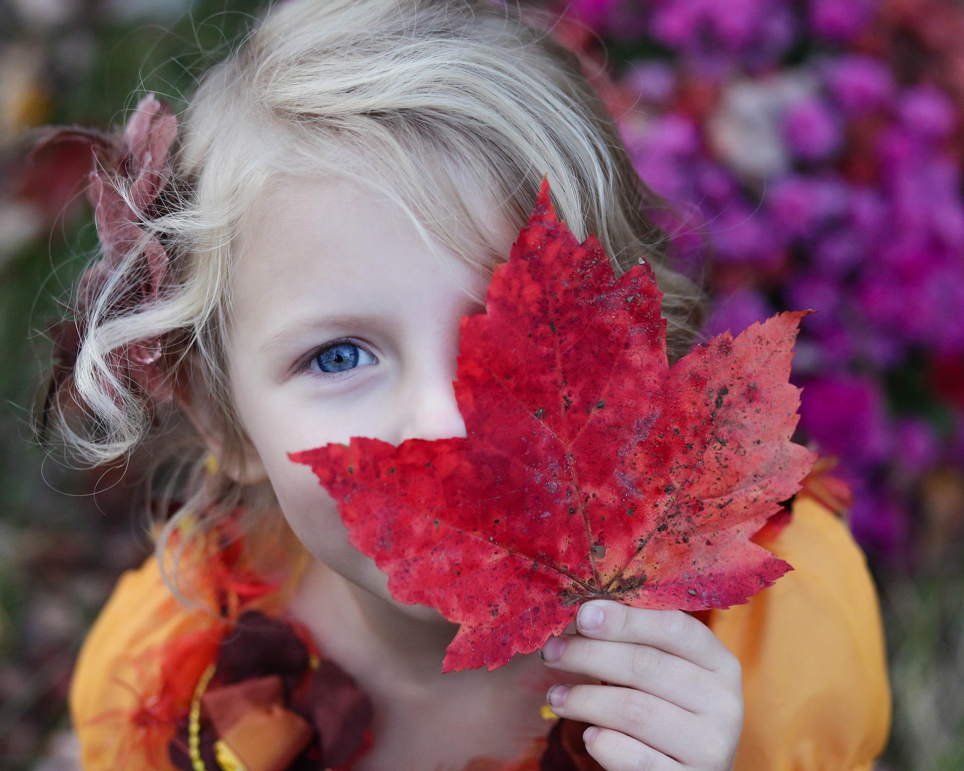Hello Weekend! November 1st – 3rd